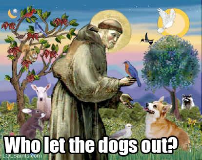 Who let the dogs out? St. Francis of Assisi with Animals
