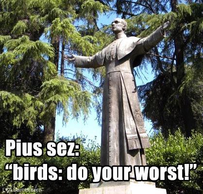 Pope Pius XII - Birds: Do your worst!