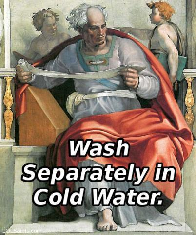 Wash separately in cold water. Joel in the Sistine Chapel